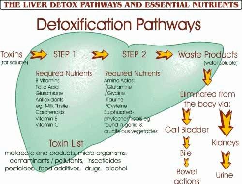 detoxphoto1